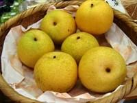 ふるた梨ぶどう園