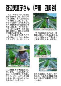 戸田津木野菜グループのイチゴ