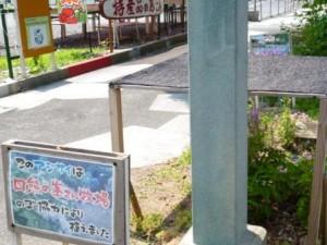 270601 こあ前あじざい (2)