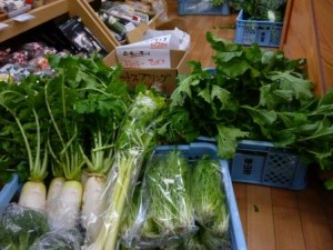 野菜大量入荷